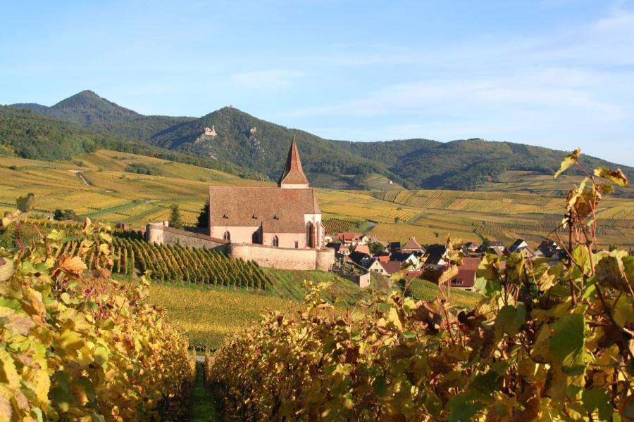 Le vin du mois – septembre 2017 : Domaine Mader à Hunawihr